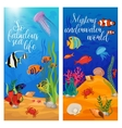 Sea Life Animals Plants Banner Set vector image vector image