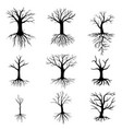 trees without leaves set vector image vector image