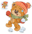 a brown teddy bear throws a vector image vector image
