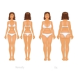 different body types set vector image vector image
