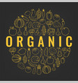 food and drink background organic food fruits vector image