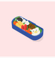 japanese lunch box bento funny cartoon food vector image vector image