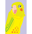parrot 3c vector image vector image