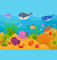 sea life animal cartoon vector image vector image