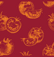 seamless pattern tomato background vector image vector image
