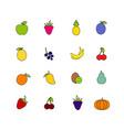 set fruit isolated on white background healthy vector image