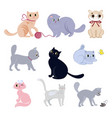 set of cute funny cats vector image vector image