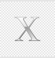 silver roman numeral number 10 x ten in alphabet vector image
