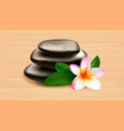 spa stones green leaves and tropical flower vector image