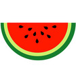 tasty watermelon vector image