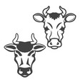 set of cow heads isolated on white background vector image