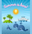 calm summer scene with whales sun island and vector image vector image