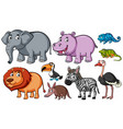 different kinds of animals on white background vector image