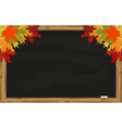 Maple leaves on black chalkboard vector image vector image