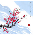 oriental red sakura cherry tree in blossom and vector image