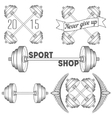 Set of barbells and dumbbell vector image vector image
