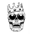 skull in a crown vector image vector image