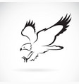 eagle design on white background wild animals vector image