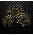 Golden holiday firework vector image