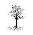 black tree silhouette with leaves and root vector image