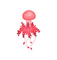 bright pink jellyfish beautiful marine creature vector image