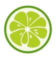 Green lime stylish icon Juicy fruit logo vector image vector image