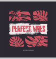 perfect vibes graphic t-shirt design vector image vector image