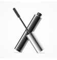 Black Mascara vector image
