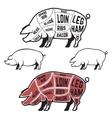 Butcher diagram scheme and guide - Pork cuts vector image vector image