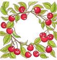 cherry branch frame vector image