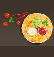 dish with nacho chips and sauces in bowls vector image