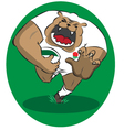 English Rugby Bulldog vector image