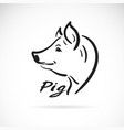 freehand pig head painting on white background vector image vector image