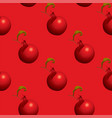 fruit seamless pattern with red ripe pomegranates vector image