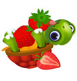 funny turtle licks ripe strawberries isolated on vector image vector image