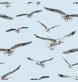 sketches flying gulls vector image vector image