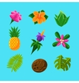 Tropical Plants And Fruits Set vector image vector image