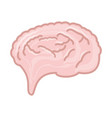 isolated pink brain vector image