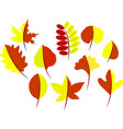 autumn leaves of a tree vector image