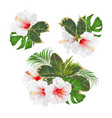 bouquet with tropical flowers set floral vector image