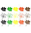 buckeye leaf color set vector image vector image