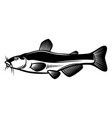 catfish in engraving style design element vector image