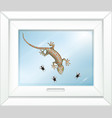 gecko on glass window with many fly in cartoon vector image vector image