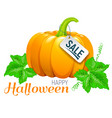 happy halloween beautiful pumpkin sale vector image