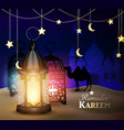lantern stands in the desert at night sky vector image vector image