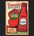 natural farm products tomato ketchup vector image