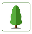 Oak poplar tree icon vector image