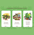 set mobile app pages hemp processing plant vector image vector image