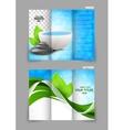 Spa salon beauty tri-fold brochure vector image