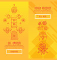 sunny set banners honey product vector image